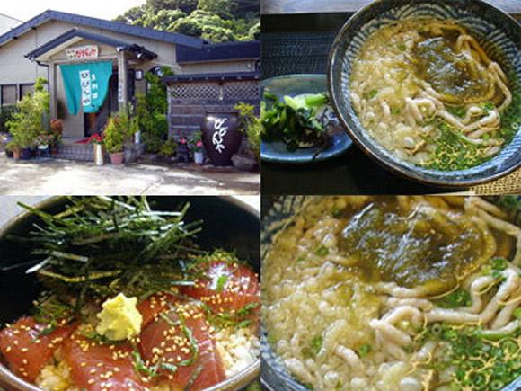 魚うどん(550円)