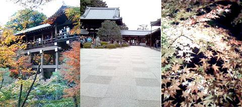 京都観光へ