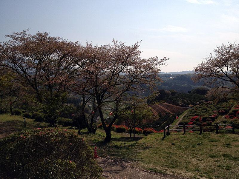 田原坂 (4)