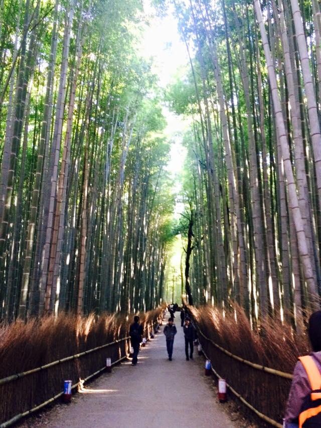 arashiyama07