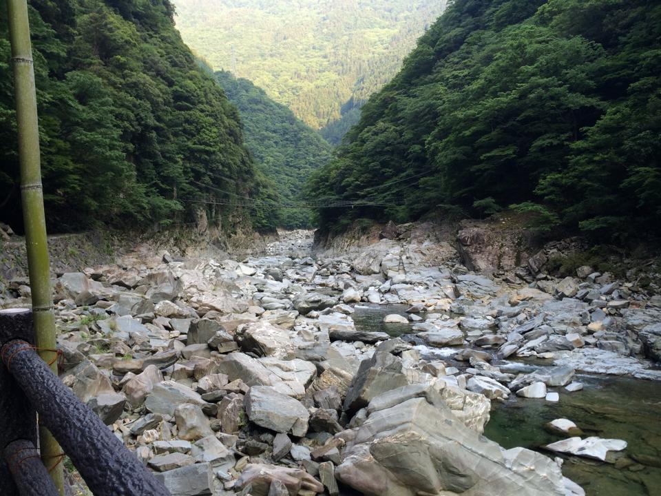 tokushima08